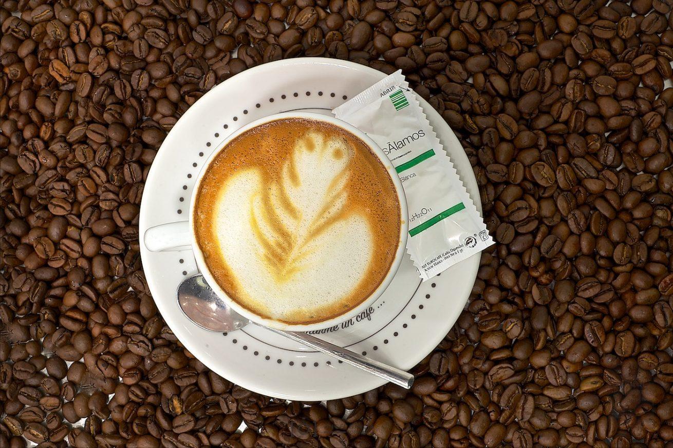 los álamos, bar, cafetería, restaurante, gastrobar, cafe, tapa, pincho, restauración, innovación, cocina, comer, tapa, pincho, cocinar, innovar, menú, cafe, gintonic, morcilla, jeta, espuma, patatas, huevo, jamón, postre, yoghurt, vermut, ensalada, presentación, calidad, nivel, helio, te, buena gente, buen hacer, carpaccio, vino, licor, producto, creación, ideas, laboratorio gastronómico, quesería la antigua, queso, jamón